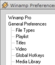 Winamp Advanced Controls 5.1
